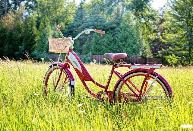 Cyclophobie-Peur des bicyclettes