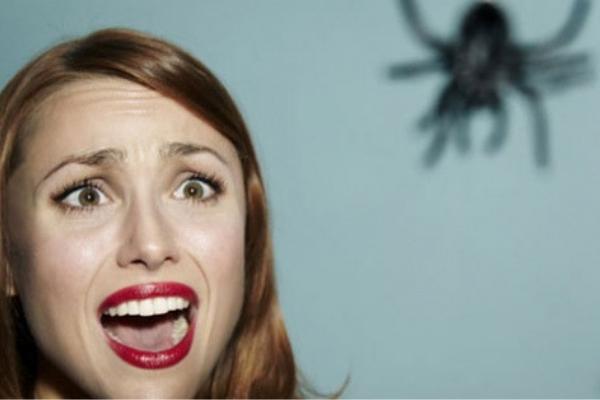 phobie araignée - Surmonter ses peurs et phobie- confiance en soi- Votre transformation spectaculaire par la libération émotionnelle, le nettoyage des blessures du passé et des croyances négatives.NERTI, EMDR, Kinésiologie
