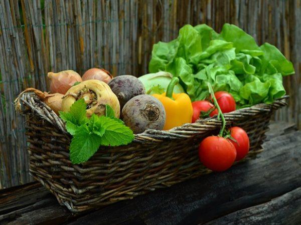 Lachanophobie- Peur des légumes.