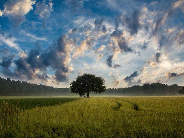 Néphophobie-Peur des nuages.